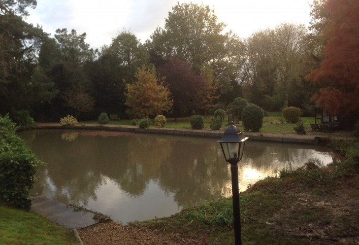 Pond lake maintenance the pond specialist for Pond service