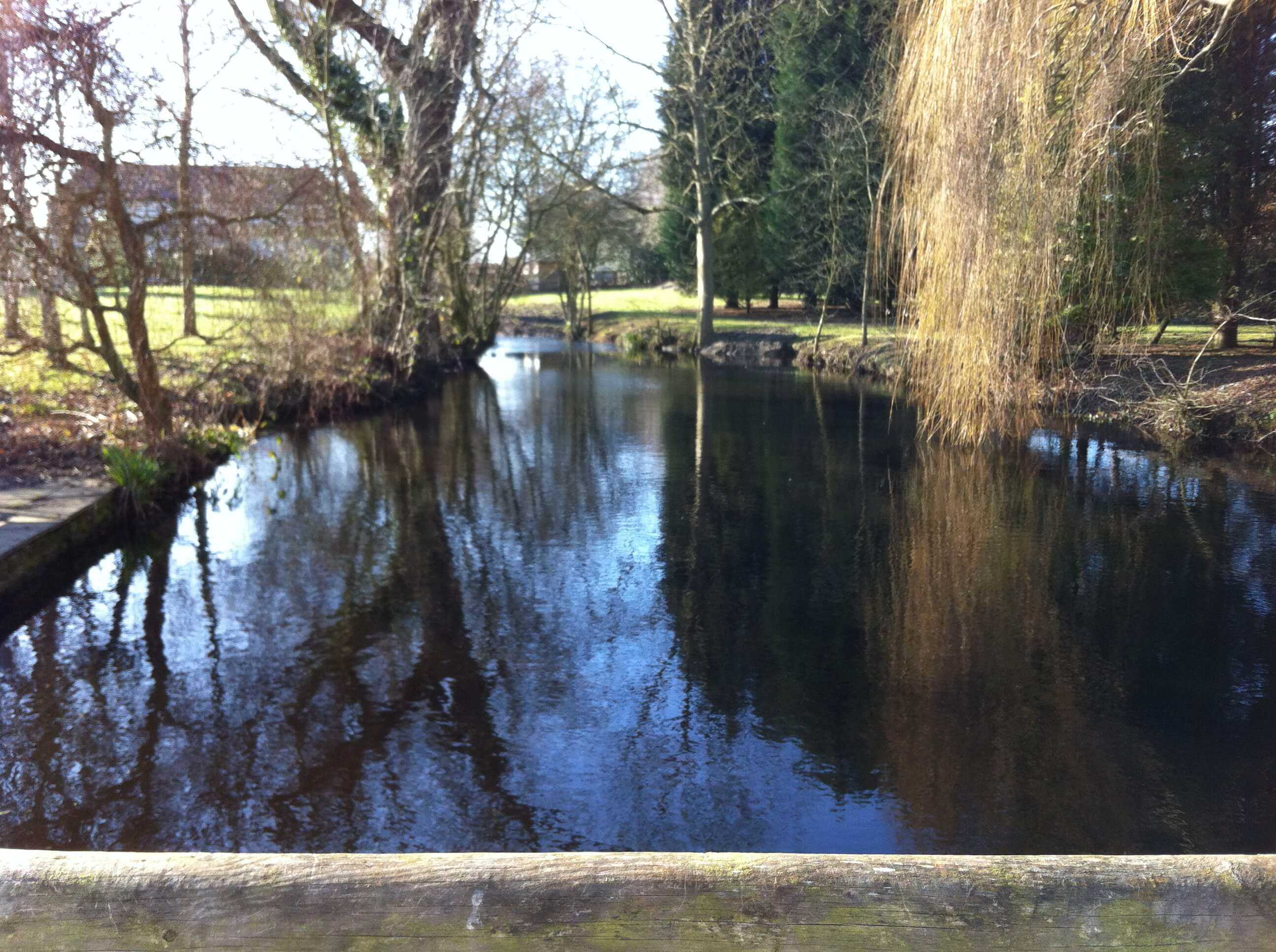 Natural pond de silting stebbing green the pond specialist for Farm pond maintenance