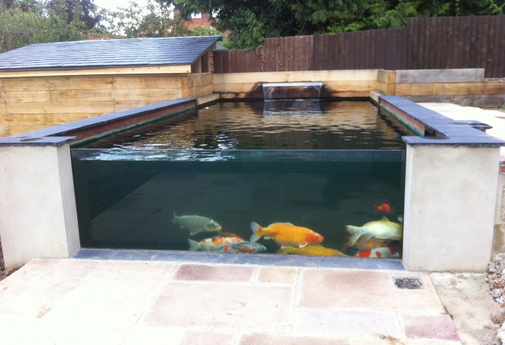 The pond specialist pond maintenance pond design in essex for Garden pond specialists